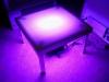 Tanzpodest mit lichtdurchlässigem Boden - Tagesmiete - Mieten